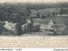 waldhambach25_1904
